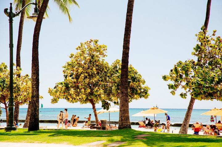Oahu1_10