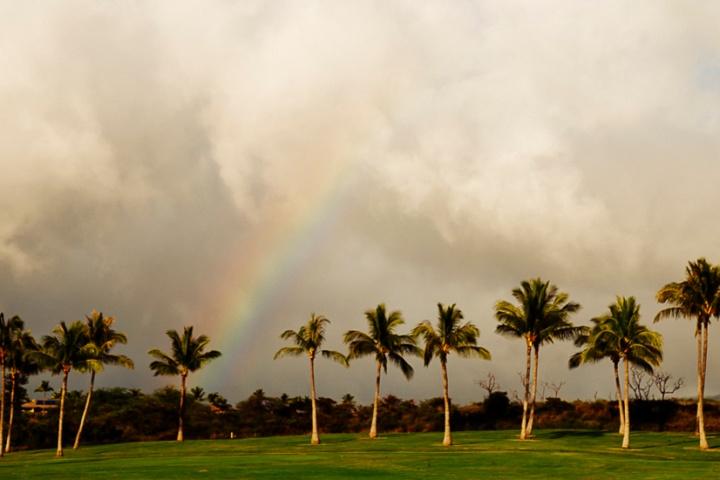 S Maui1_10