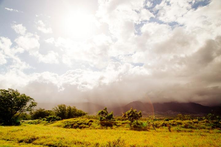 S Maui1_3