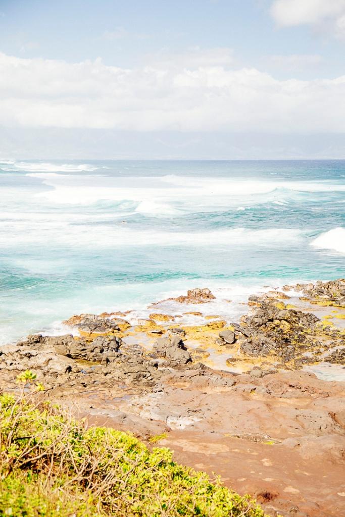 S Maui1_40