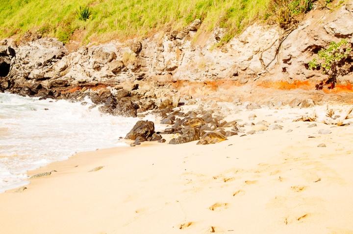 S Maui1_79