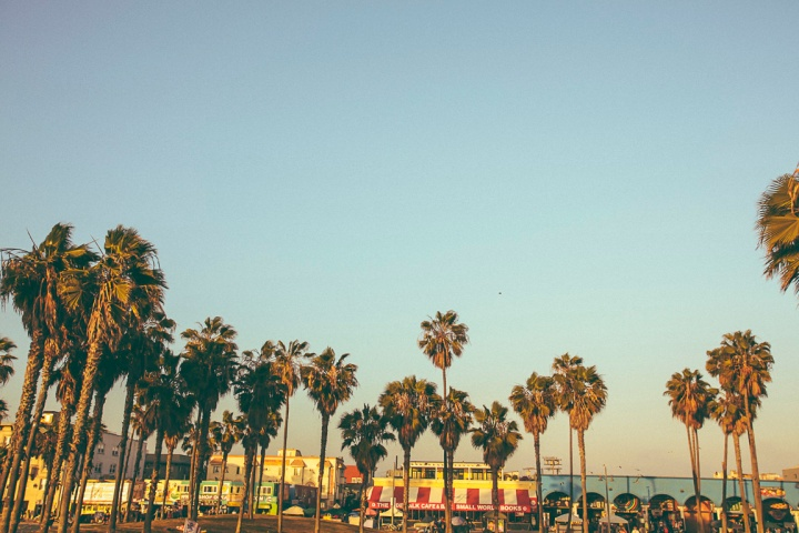 Venice1_4