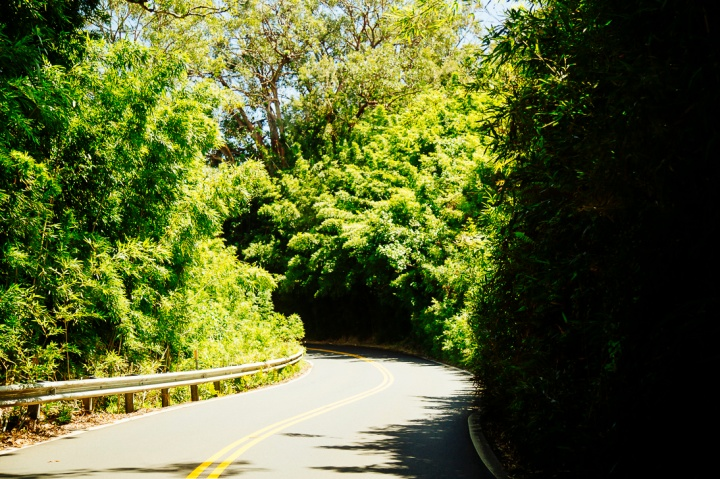 Road to Hana1_15