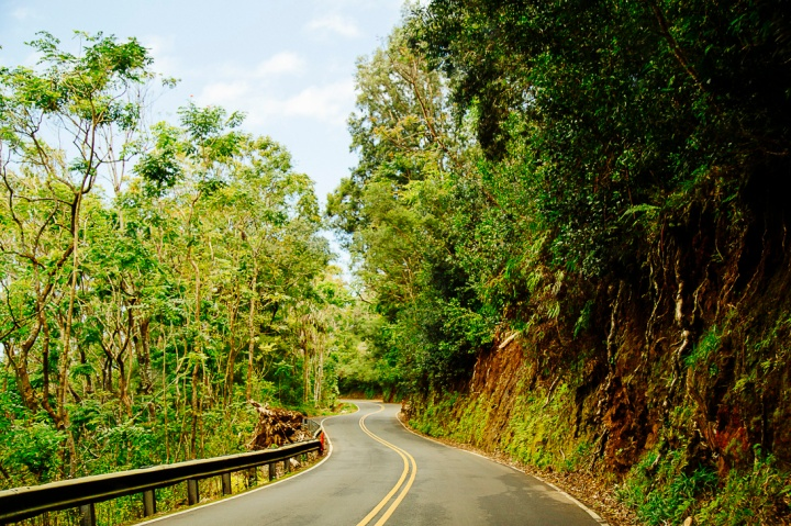 Road to Hana1_43