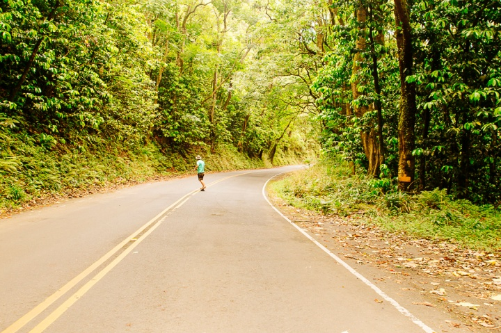 Road to Hana1_47