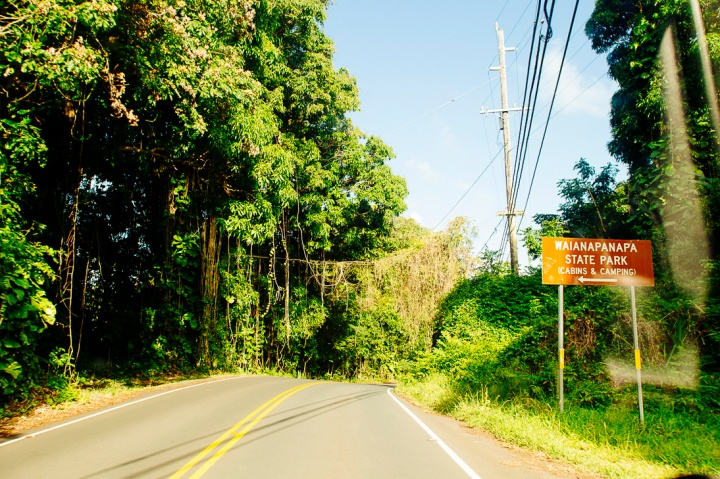 Road to Hana1_69