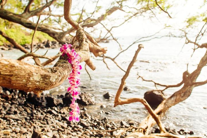 S Maui1_100