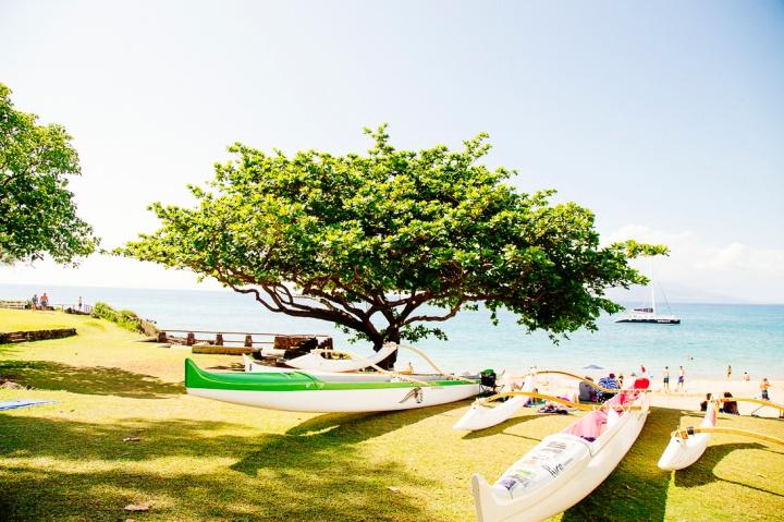 S Maui1_87