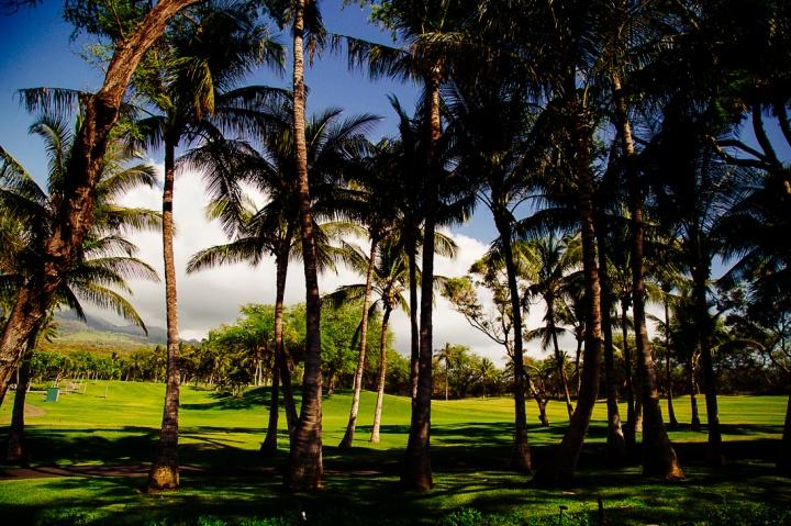 S Maui1_92