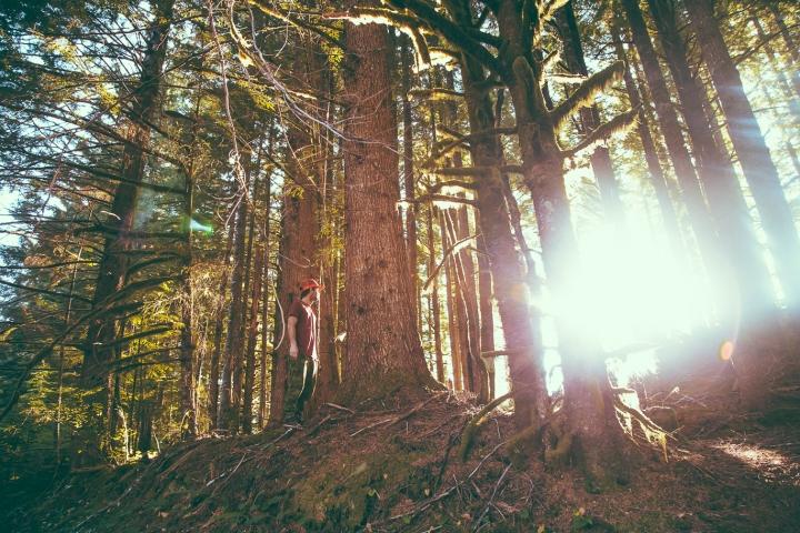 Hummer Oregon _Scandinavian_17