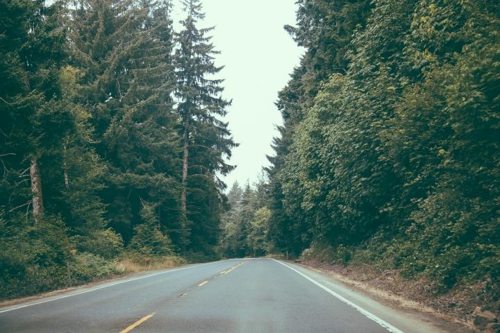 Hummer Oregon _Scandinavian_29