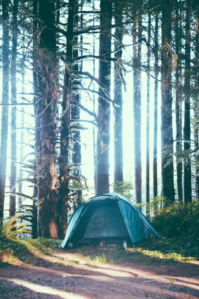 Hummer Oregon _Scandinavian_9