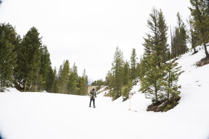 Yukon_Yellowstone _26