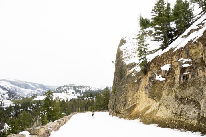 Yukon_Yellowstone _39