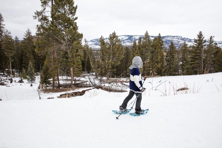 Yukon_Yellowstone _5
