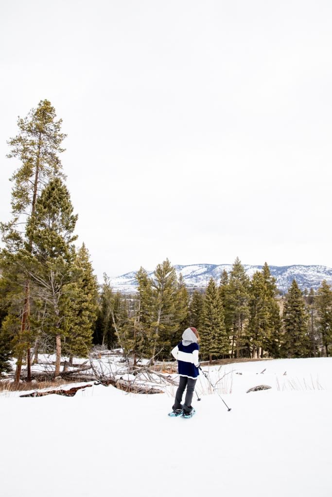 Yukon_Yellowstone _9