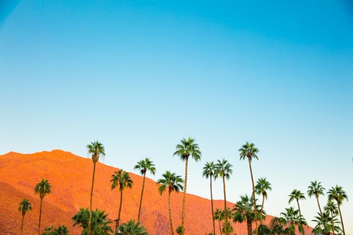 Palm_Springs_Blog (11 of 31)